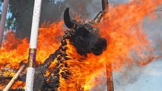 Ritual Penyembelihan Hewan Diprotes di Sri Lanka