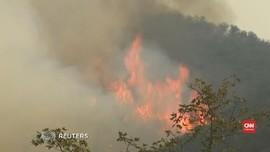 VIDEO: Api Kebakaran California Melahap Perumahan Elite