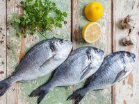 Sea Bream adalah ikan putih dengan daging yang halus. Dalam bahasa Arab, ikan ini dikenal sebagai 'ikan yang membuat mimpi'. Icthyoallyeinotoxism adalah istilah yang digunakan untuk ketika Anda mengalami keracunan ikan halusinogen karena menelan kepala atau daging dari beberapa jenis ikan karang di Pasifik tropis di Samudra Hindia termasuk ikan yang satu ini. (Foto: Ilustrasi/Thinkstock)
