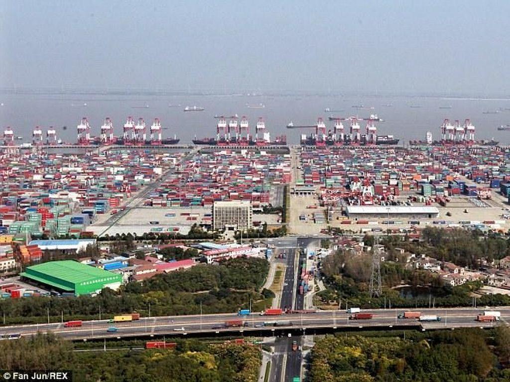 Selain itu, pelabuhan tersebut diperkirakan memiliki setidaknya 5.143 unit peralatan penanganan kargo. Hal itu membuat Pelabuhan Shanghai menjadi pelabuhan kontainer dengan pengiriman tersibuk di dunia.