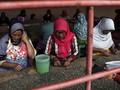 Pemerintah Ingatkan Perusahaan Tak Pelit Kasih Cuti Haid