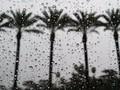Cara Mudah Kabur dari Musim Hujan di Akhir Tahun