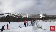 Gunung Bersalju di Jepang Meletus, Satu Pemain Ski Tewas