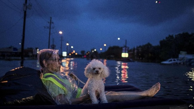 Helikopter penyelamat meraung di atas seorang nenek dan anjing pudelnya yang menggunakan matras untuk mengapung sambil menunggu bantuan pasca hantaman Topan Harvey di Scarsdale Boulevard, Houston, Texas, Amerika Serikat, 27 Agustus 2017. (REUTERS/Adrees Latif)