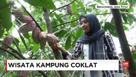 VIDEO: Mengenal dan Mencicipi Cokelat di Doesoen Kakao