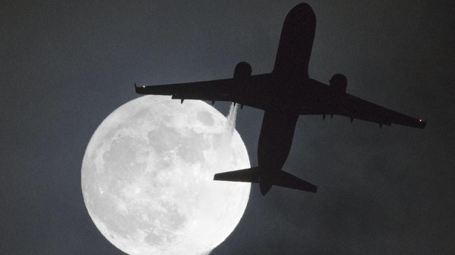 Fenomena supermoon yang terekam ketika pesawat melintas di bandara Heathrow di London. Supermoon ini dikenal juga sebagai fenomena bulan serigala (AFP PHOTO / Justin TALLIS)