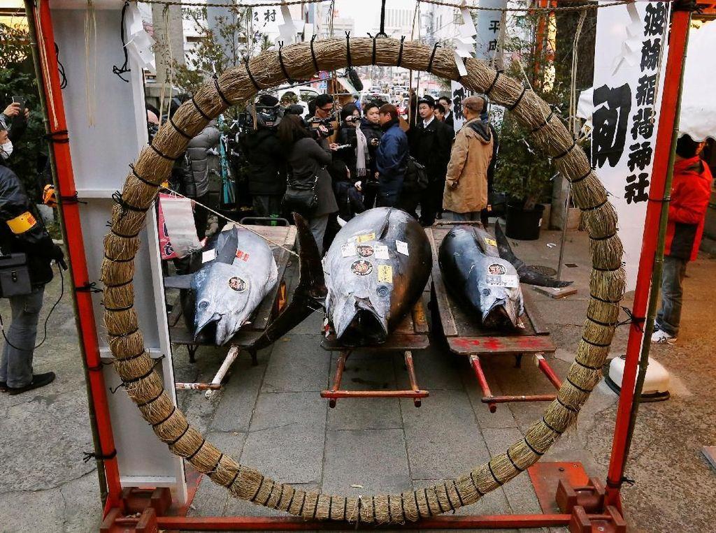 Pengunjung melihat pelelangan tuna segar.Foto: Reuters/Toru Hanai