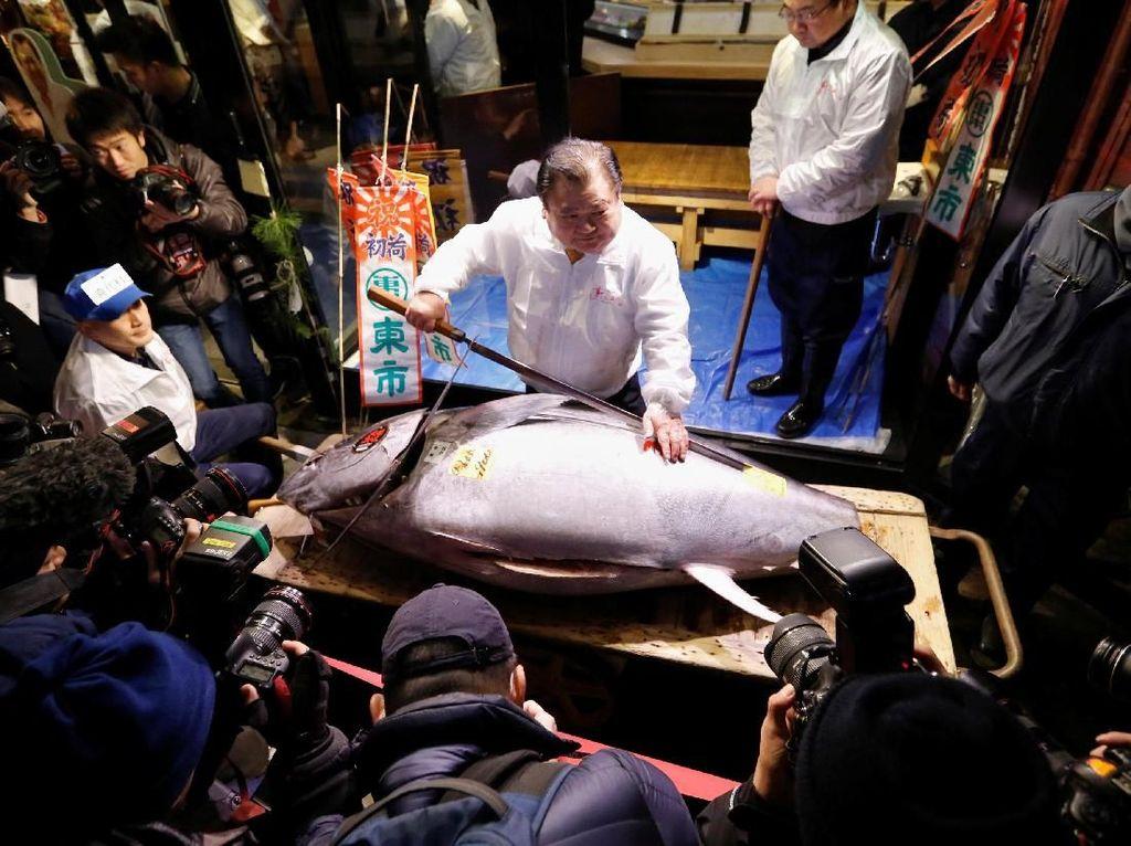 Pemilik retail restoran sushi di Jepang berhasil memenangkan lelang ikan tuna raksasa pada 5 Januari lalu. Tak tanggung-tanggung, tuna dibeli dengan harga USD 300.000 atau setara hampir Rp 4 miliar. Foto: Reuters/Toru Hanai