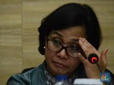 'Malaikat Itu Bukan BI, Tapi Bank Jangkar Sri Mulyani'