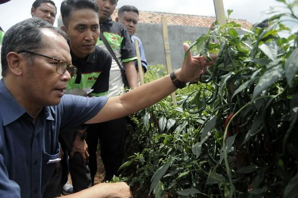Ewindo Kukuhkan Petani Muda Panah Merah di Lampung