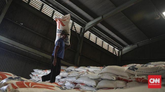 Pemerintah Beri Tambahan Beras 500 Ton untuk Palu