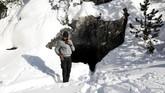 Dari sana, dia masih harus berjuang, mempertaruhkan hidupnya membelah Pegunungan Alpen di tengah suhu -9 derajat Celsius, demi membangun hidup yang lebih sejahtera di Perancis. (Reuters/Siegfried Modola)