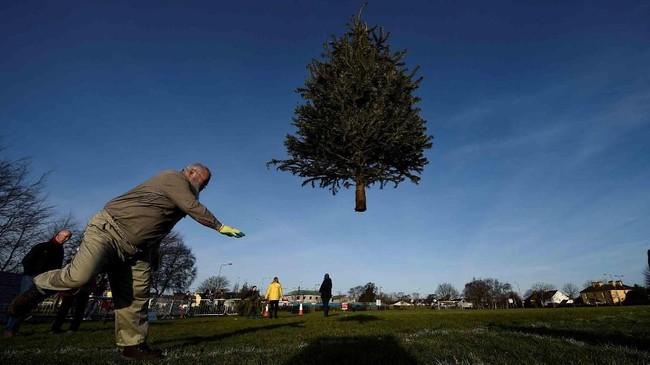 <p>Seorang pria berpartisipasi dalam kompetisi lempar pohon natal di kota Ennis, Irlandia. (Reuters/Clodagh Kilcoyne)</p>