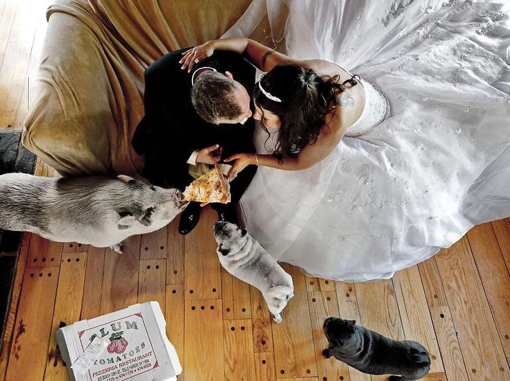 Mungkin, kalian yang mau menikah. Bisa menyertakan hewan peliharaan. Foto: Bored Panda