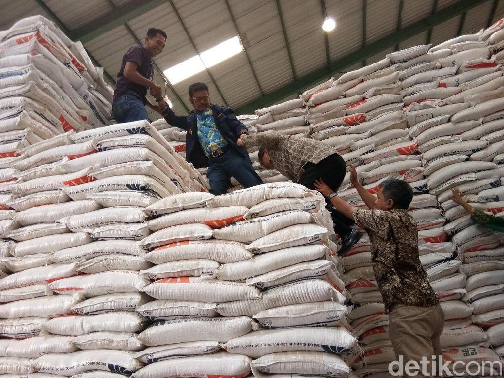 Ketiganya sempat memanjati tumpukan karung beras di gudang Bulog Sulsel, di Jalan Urip Sumahardjo, Makassar.