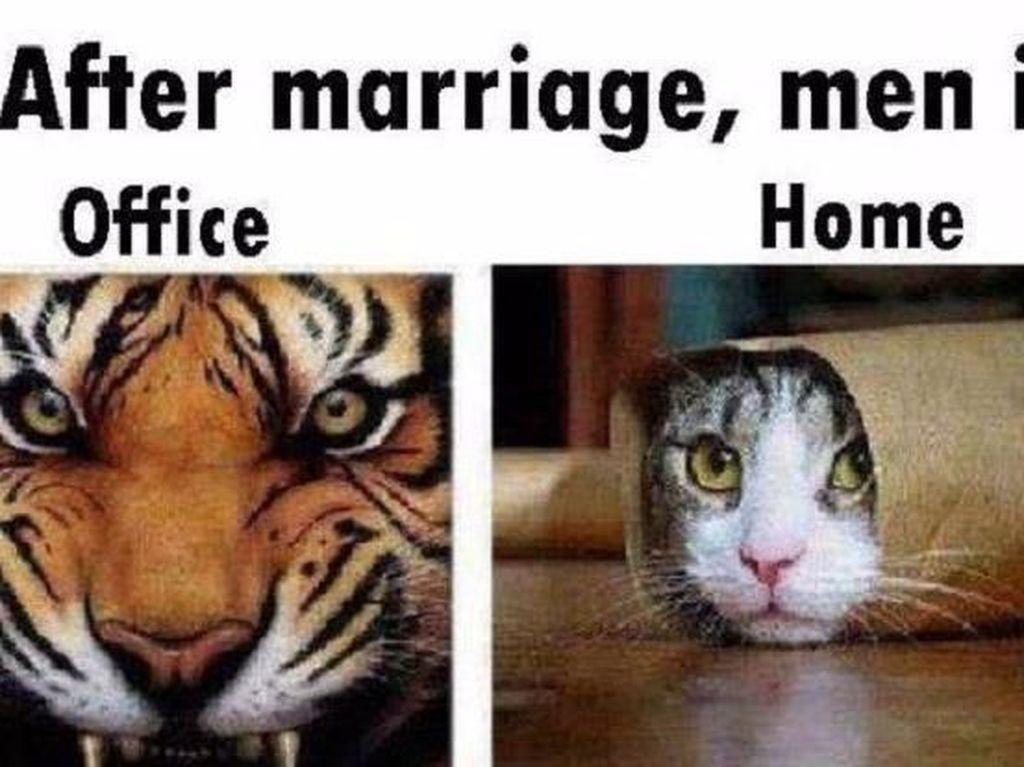 Setelah menikah, di kantor pria tetap bisa garang, lain ceritanya kalau sudah di rumah dan berhadapan dengan istri. Jadi mengkeret. Foto: istimewa
