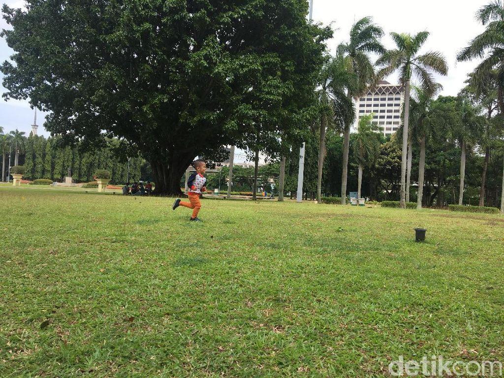 Pagar yang dulunya membatasi lapangan rumput, sekarang telah dicabut. (Foto: Gusti Ramadhan/detikcom)