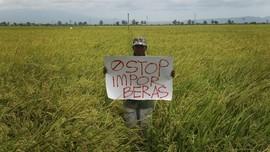 Tiga Daerah Suarakan Penolakan Impor Beras