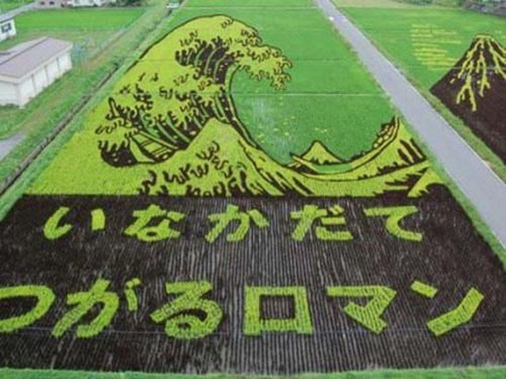 Masyarakat Jepang juga ahli dalam membuat crop circle di sawah. Kali ini gambarnya ombak tinggi di tengah laut yang siap menghantam. Byuuur! Foto: Istimewa