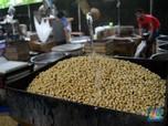 Kementerian Pertanian Siap Hentikan Impor Kedelai dari AS