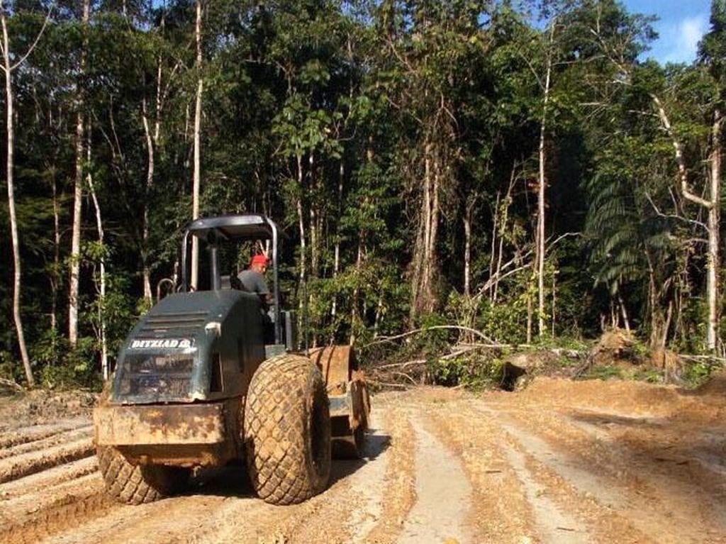 Dengan pembangunan ini, maka pada akhir 2018, dari hampir 850 km jalan (paralel) perbatasan di Kalimantan Barat, yang belum tersambung tinggal 47 km. Dok PUPR/Ditjen Bina Marga.