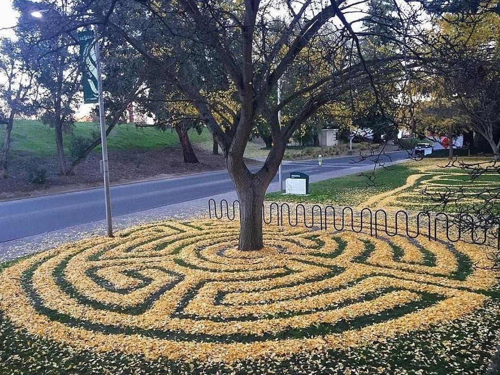 Foto: Kreatif, Daun Musim Gugur Bisa Dibuat Keren Begini