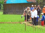Dana Desa Rp 22 T Digeser Buat Bantuan Langsung Tunai