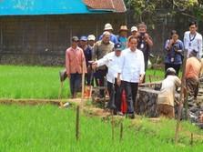Jokowi: Kita Semua Harus Kompak Agar Ekonomi Lari Kencang