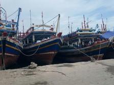 Potensi 2,6 Juta Tangkapan Ikan, Ekspor Didorong ke Timur RI