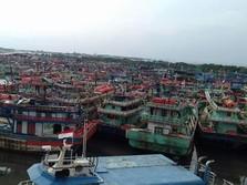 Ini Hasil Pendataan Kapal Cantrang di Tegal
