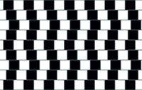 Cafe wall illusion membuat kamu merasa bingung karena gambar ini terasa tidak simetris namun nyatanya garis-garis yang ada tetap tergambar lurus. Ilusi optik sendiri terbagi menjadi ilusi kognitif dan fisiologi, nah ini adalah contoh dari ilusi kognitif. (Foto: optical-illusions.info)