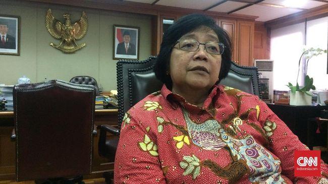 Menteri LHK Minta Freeport Perbaiki Pengelolaan Limbah B3