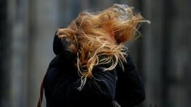 Badai Friederike Terjang Eropa, Lumpuhkan Belanda