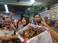 Ekspor Buah RI ke China Melesat, Dari Manggis Hingga Pisang