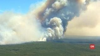 VIDEO: Kebakaran Royal National Park, Sydney