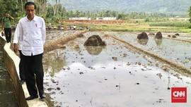 Tawa Jokowi Ketika Mendengar Indonesia Disebut Suku