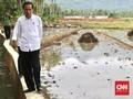 Opsi Jokowi Relokasi Warga Asmat Ditolak, Pembangunan Dikebut