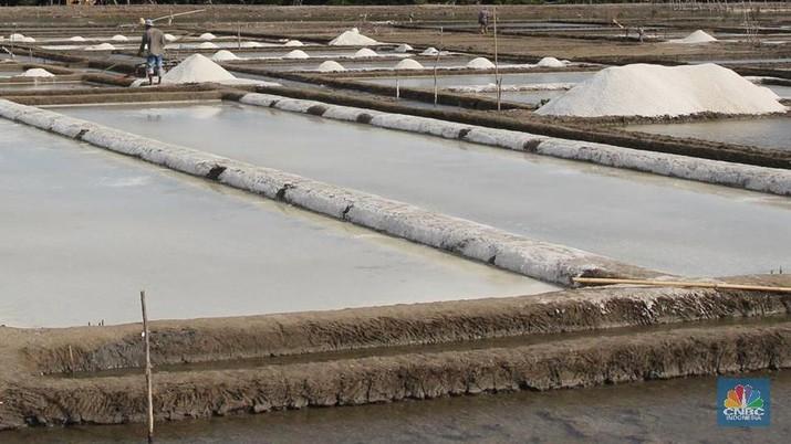 Garam impor masih jadi kebutuhan di dalam negeri.