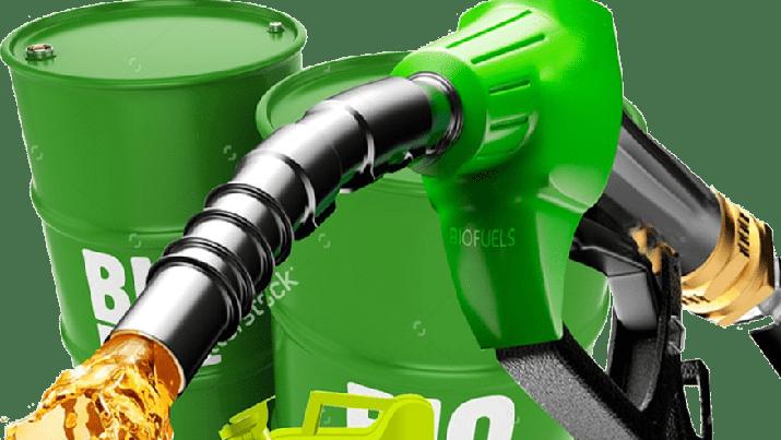 Eskpor Biodiesel ke China Terbentur Harga
