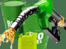 Siapa yang Untung Bila Program Biodiesel Sukses?