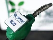 Anjloknya Harga Minyak Bikin Program Biodiesel Jadi Berat