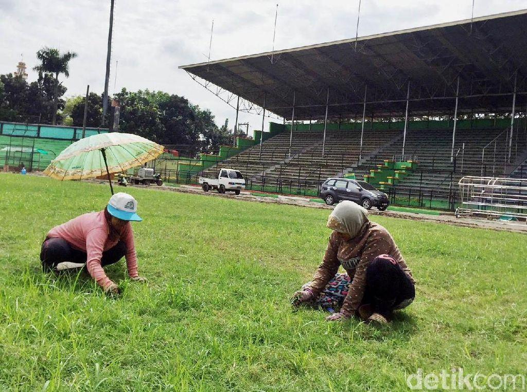 Di tengah lapangan, tempat pertandingan nanti terfokus, ada perawatan rumput.