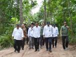 Turun ke Sawah, Jokowi  Tinjau Program Padat Karya Tunai