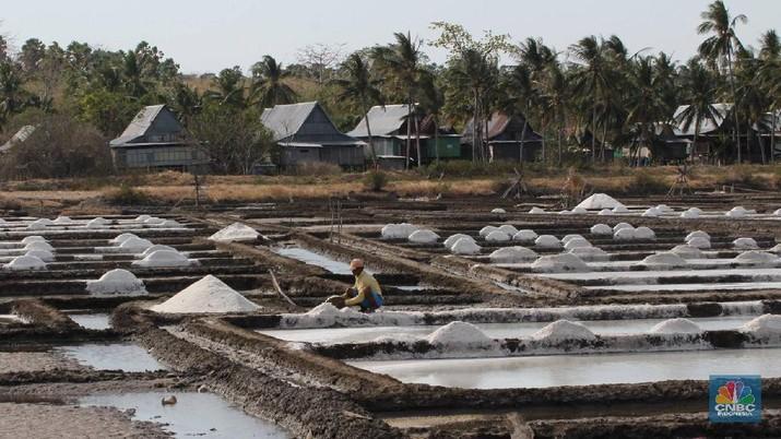 Sepanjang tahun lalu, penyerapan garam petani hampir 90% dari produksi garam lokal 1,2 juta ton.