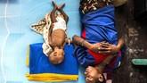 Tim kesehatan memasok tambahan gizi makanan untuk penderita gizi buruk. Tim juga membawa vaksin untuk imunisasi bagi anak-anak di Asmat yang selama ini belum diimunisasi. (Antara/M Agung Rajasa)