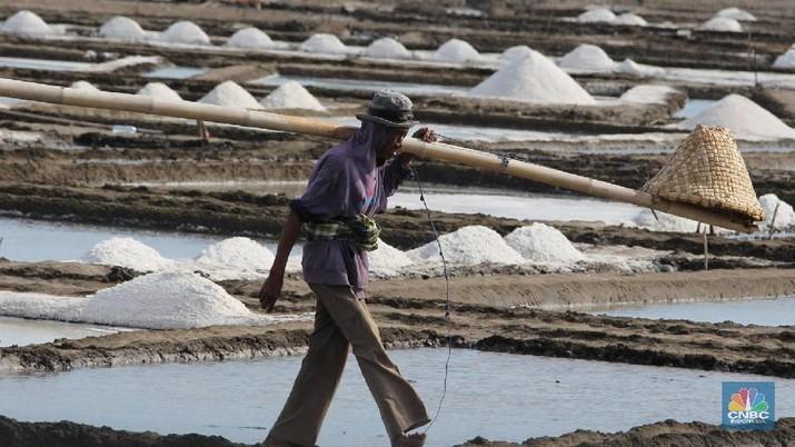 Proses impor garam yang menggunakan jalur laut membutuhkan waktu sekitar 3-4 minggu untuk bisa sampai.