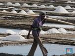 Asosiasi: Dua Minggu Lagi Garam Impor Tiba di Indonesia