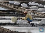 Garam Minim, Industri Makanan dan Infus Hentikan Produksi