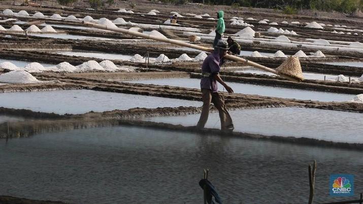 Kementerian Perdagangan menerbitkan izin impor garam sebanyak 2,37 juta ton.