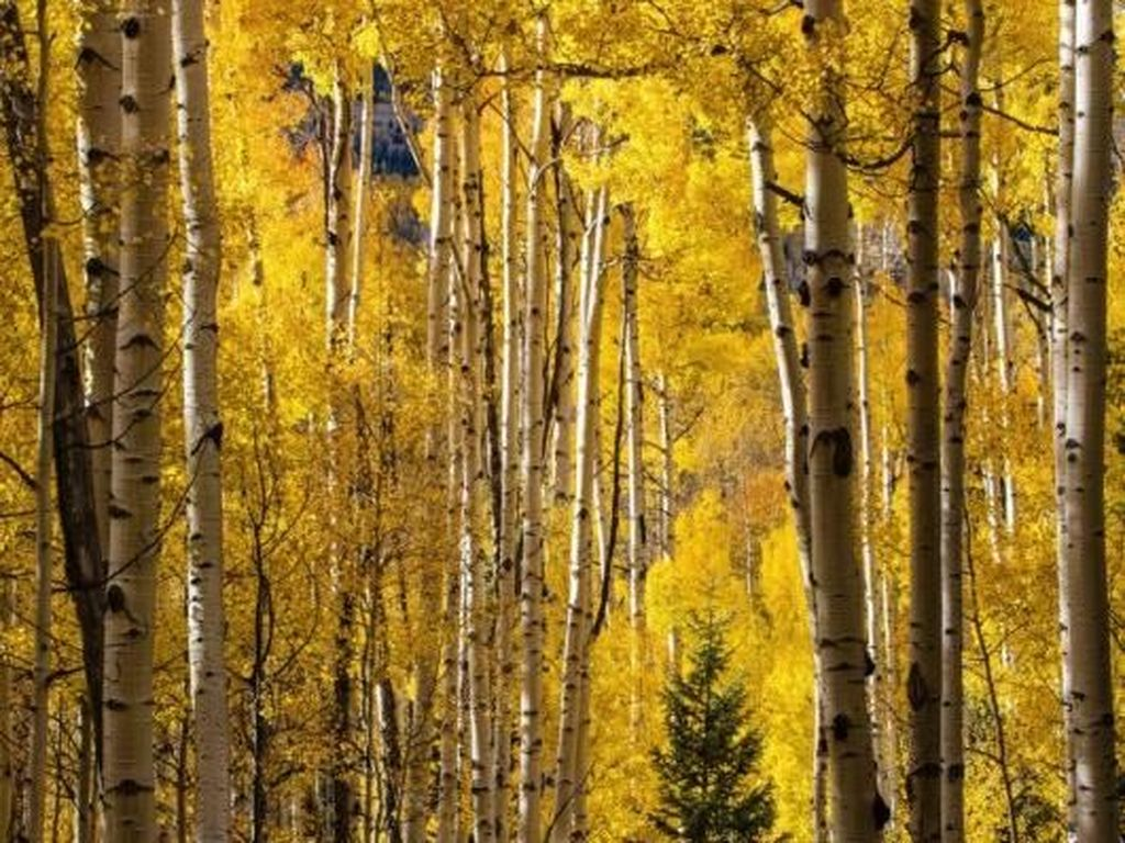 Finalis - Ben Murphy. Nikon D800. Foto: Outdoor Photographer